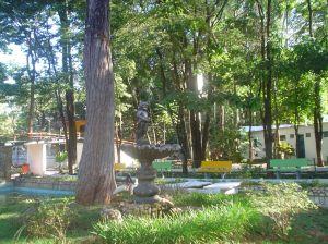 Parque Mutirama